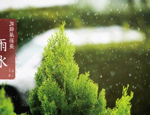 雨水|24節氣保養